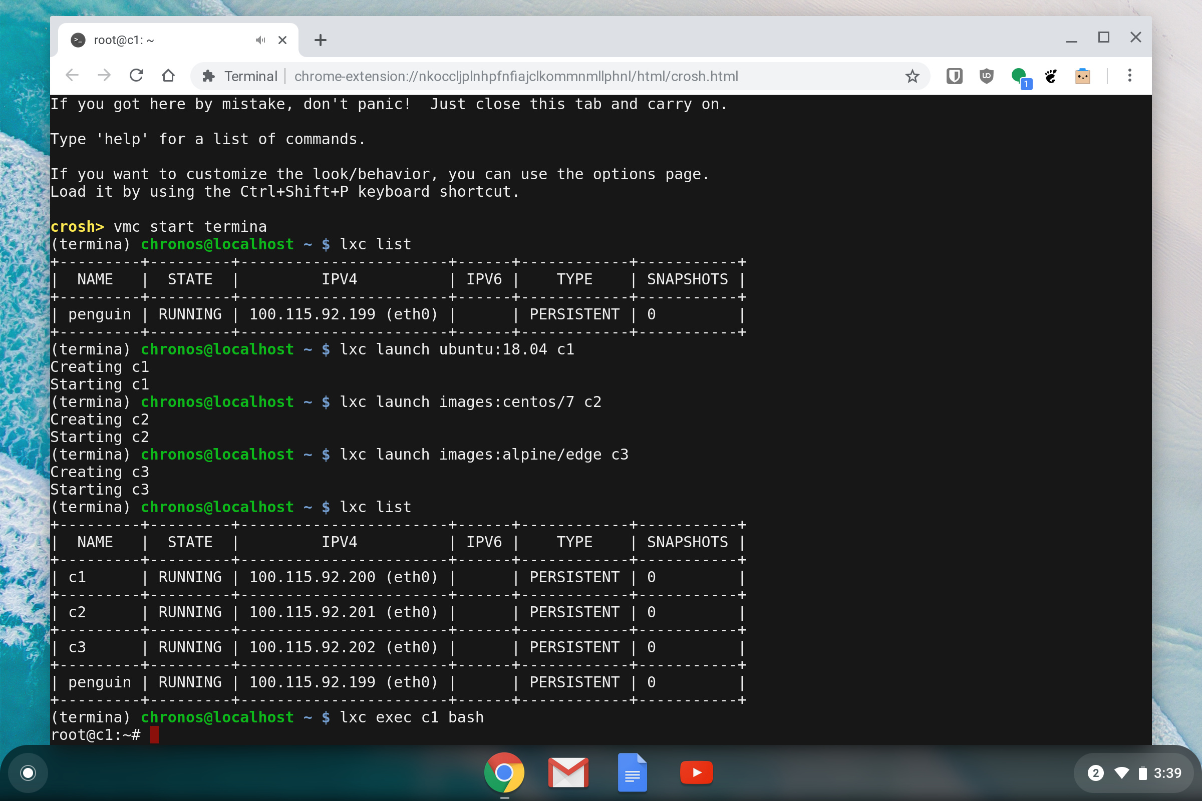 Using LXD on your Chromebook - LXD - Linux Containers Forum